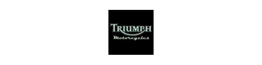 Protections bras oscillant Triumph