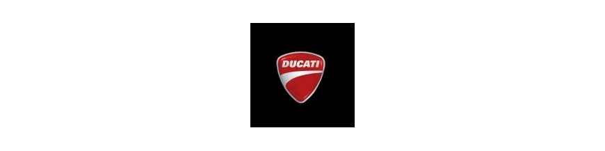 Protection de fourche Ducati